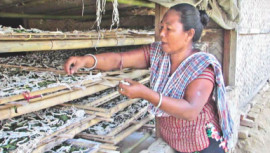 Silk industry in Chittagong Hill Tracts